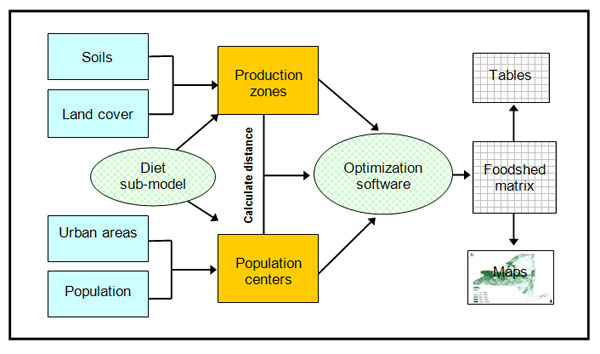 A simplified schematic of the methodology